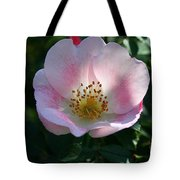 Carefree Delight Tote Bag