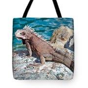 Caribbean Iguana Tote Bag