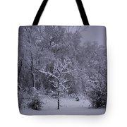 Carolina Snowfall Tote Bag