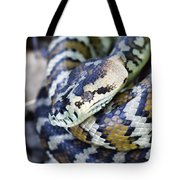 Carpet Python Tote Bag