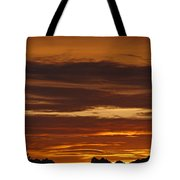 Cascade Mountains Sunrise 2 Tote Bag