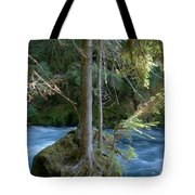 Cascade Rapids Tote Bag