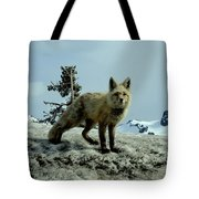 Cascade Red Fox 2 Tote Bag