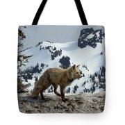 Cascade Red Fox 3 Tote Bag