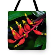 Cascading Color Tote Bag