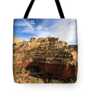 Cassidy Arch Overlook Tote Bag