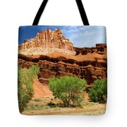 Castle In The Capitol Tote Bag