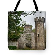 Castle Near Upper Lake Kilarney Irelnad Tote Bag