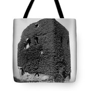 Castle Of The O Briens - Ruins - Near Galway Ireland - C 1901 Tote Bag