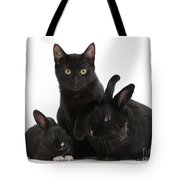 Cat And Rabbits Tote Bag