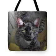 Cat Art Of Relaxing Tote Bag