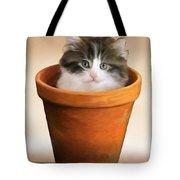 Cat In A Pot Tote Bag