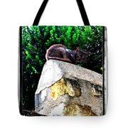 Cat On Medieval Wall Tote Bag