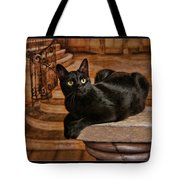 Cat On Pillar Tote Bag