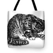 Cat-tabby-posters-1 Tote Bag