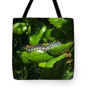 Caterpillar Photograph Tote Bag