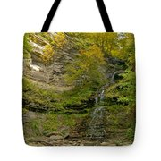 Cathedral Falls West Virginia Tote Bag