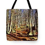 Catoctin Trail Tote Bag