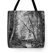 Catskill Brook, 1873 Tote Bag