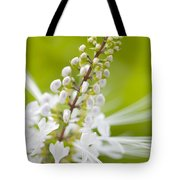 Cat'swhiskers Tote Bag