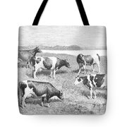 Cattle, 1888 Tote Bag