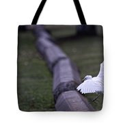 Cattle Egret Landing Tote Bag