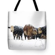 Cattle In A Snowstorm In Southwest Michigan Tote Bag