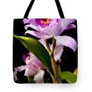 Cattleya Tote Bag