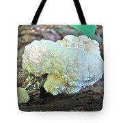 Cauliflower Mushroom On Log Tote Bag