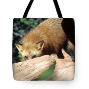Cautious Red Fox Tote Bag