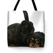 Cavalier King Charles Spaniel And Rabbit Tote Bag