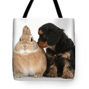 Cavapoo Pup And Sandy Netherland-cross Tote Bag