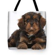 Cavapoo Pup Tote Bag
