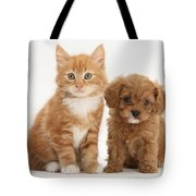 Cavapoo Puppy And Kitten Tote Bag
