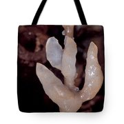 Cave Formation Dripping Tote Bag