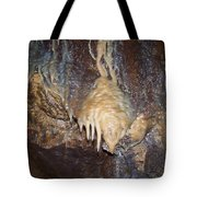 Cave Formations 31 Tote Bag