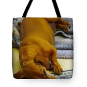 Cb Lazy July Afternoon Tote Bag