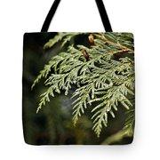 Cedar Due Droplets Tote Bag