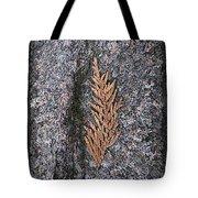 Cedar On Granite Tote Bag