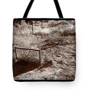 Cedar Pete Gravesite In Grafton Utah Tote Bag