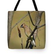 Cedar Waxwing - 2491 Tote Bag