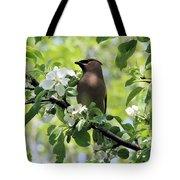 Cedar Waxwing Among Apple Blossoms Tote Bag