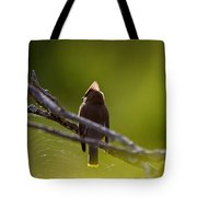 Cedar Waxwing Perched In Tree Tote Bag