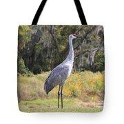 Central Florida Sandhill Crane With Oaks Tote Bag