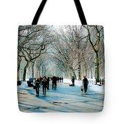 Central Park In Winter Tote Bag