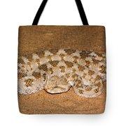 Cerastes Cerastes Horned Viper Tote Bag