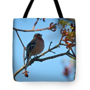 Chaffinch Tote Bag