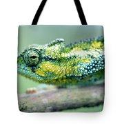 Chameleon In The Forests Of Mt Meru Tote Bag