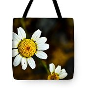 Chamomile Flower In Decay Tote Bag