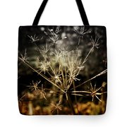Changes Tote Bag by Ellen Heaverlo
